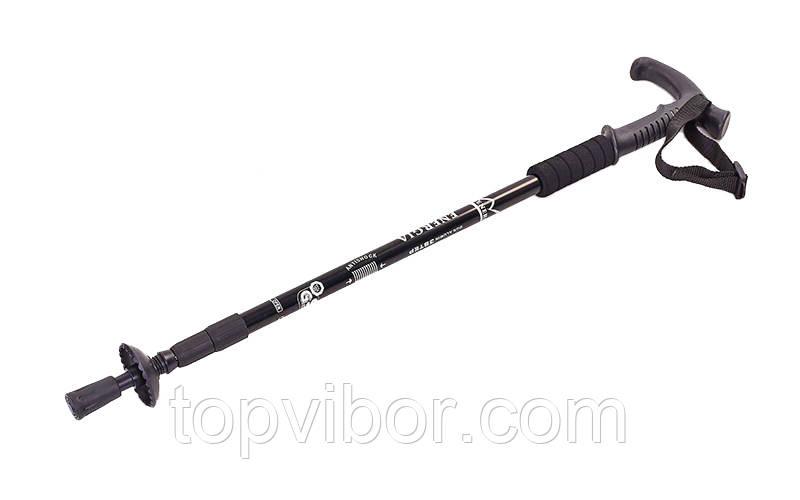 Палки для спортивной скандинавской ходьбы Energia Черный 135 см (1шт) трекинговые палки с доставкой