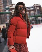 Короткая женская дутая куртка на синтепоне в расцветках (Норма), фото 2