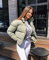 Короткая женская дутая куртка на синтепоне в расцветках (Норма), фото 9