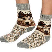 Чоловічі шкарпетки, 21