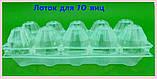 Упаковка для яиц ПС-3610 для 10 шт  (50 шт), фото 2