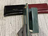 Женские кошельки на магните (3цвета масляные)19х9см, фото 3
