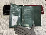 Женские кошельки на магните (3цвета масляные)19х9см, фото 4