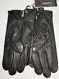 Кожа натуральная с шерсти сетка Angel  мужские перчатки только оптом, фото 3