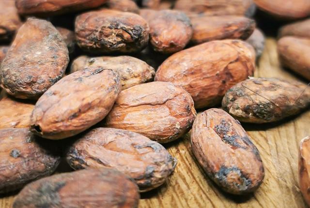 Какао бобы Криолло