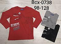 Трикотажний реглан для хлопчиків Glo-Story, 98-128 рр. Артикул: BCX0738, фото 1