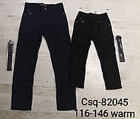 Котоновые брюки на флисе для мальчиков Seagull ,116-146 рр. Артикул: CSQ82045 , фото 1