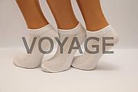 Женские носки короткие с хлопка в сеточку КЛ 36-40 белый
