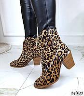 Леопардовые ботинки казаки зимние натуральная кожа пони,люкс качество код 24893, фото 1
