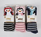 Махровые колготки для девочек 5-6 лет TM Arti оптом Турция, фото 3