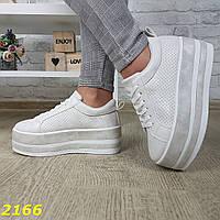 Криперы кроссовки на высокой платформе кремовые с серебристым напылением 39 размер - 24,5 см sp-2166, фото 1