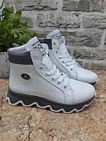 """Ботинки  зимние """" Саsuаl """"  натуральный замш и кожа  разные цвета код 19158, фото 1"""