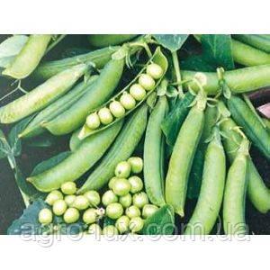 Семена гороха Преладо 500 г