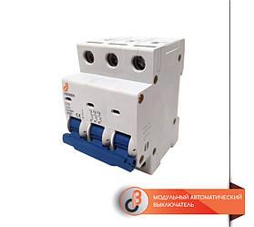 Модульный автоматический выключатель EBS6BN-6-3-10