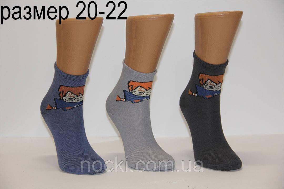 Підліткові шкарпетки середні з малюнком НЛ 20-22 Гаррі Потер