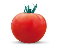 Семена томата Шейла F1 1000 сем.Саката.