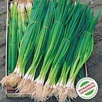 Семена лука на перо Параде 10 000 шт