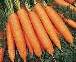 Семена моркови Бангор F1 (2,2-2,5мм) 1 млн шт Bejo / БЕЙО