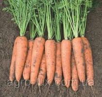 Семена моркови Белградо F1 (1,6-1,8 мм)1 млн шт