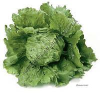 Семена салата айсберг Диамантинас, 1000 драже