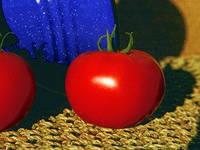 Семена красного томата Пьетро F1 25000c Акция!! Clause / Клоз, фото 1