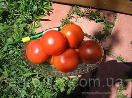 Семена красного томата Кристал F1 1г Clause / Клоз