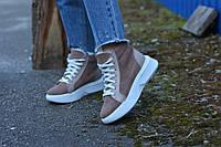 Ботинки натуральная замша бежевые, фото 1