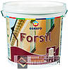 Forsil Escaro TM (Эскаро ТМ) Силиконовая фасадная краска, 9,5 л