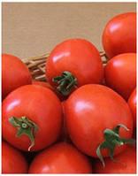 Семена томата Лидия F1 1000 сем. MaySeed.