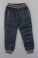 {есть:1 год} Болоневые  штаны для мальчиков F&D, Артикул: WX2560 [1 год]
