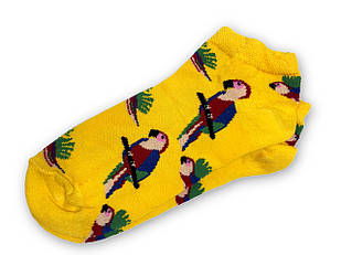 Шкарпетки Neseli Папуги