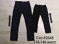 Котоновые брюки для мальчиков на флисе Seagull 116-146 р.р., фото 1
