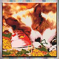 "Картина по номерам  ТМ Идейка, Собака ""Спящий малыш"" 40*40 см, холст на подрамнике, без коробки"