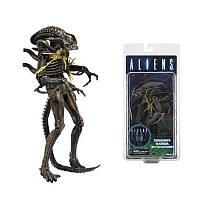 Фигурка Чужой Ксеноморф( выстрел в поврежденный в торс) - Aliens Xenomorph Warrior (Battle Damaged) NECA