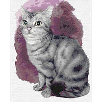 Картини за номерами - Маленьке кошеня (КНО4187)
