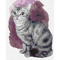 Картины по номерам - Маленький котенок (КНО4187)