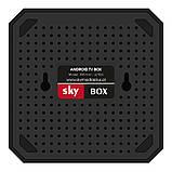 Android TV приставка SKY (X96 mini) 9.0 2/16 GB, фото 2