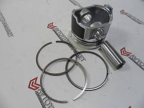 Поршень з кільцями стд 115017620 Perkins 400 серия GJ, HH, 403D-11, 403C-11