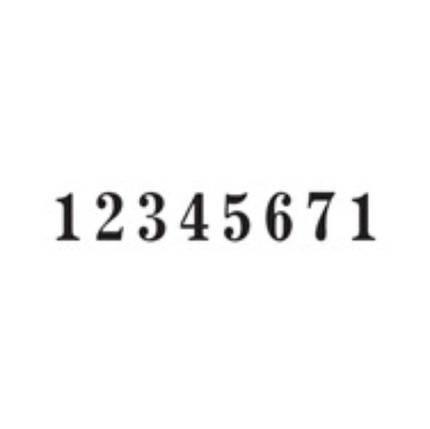 Нумератор автоматический 5,5мм, 8-ми разрядный, шрифт-antique, REINER B6K/8, фото 2