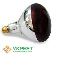 Инфракрасная лампа   из закаленного стекла Bongbada 175 Вт для обогрева животных, фото 1