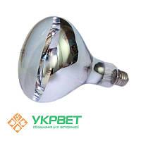 Инфракрасная лампа для обогрева птиц прозрачная, 100 Вт, Е27