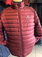Куртка мужская стеганная короткая демисезонная бардо БОЛЬШИХ РАЗМЕРОВ фирмы TIGER FORSE