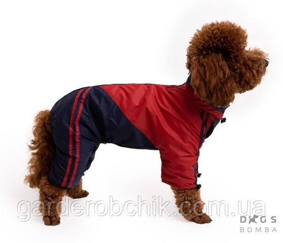 Дождевик, комбинезон для собак с утеплителем MF-13. Одежда для собак