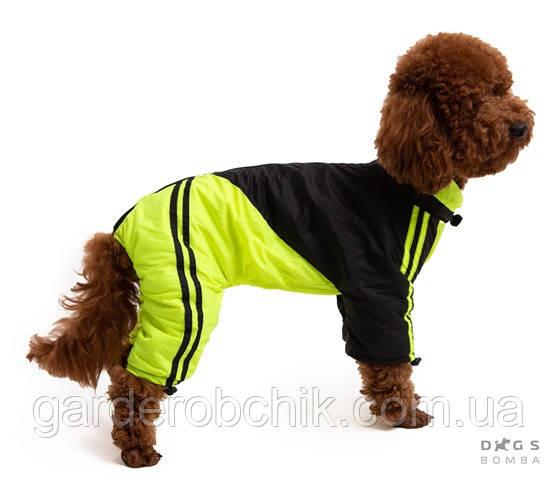 Дождевик, комбинезон для собак с утеплителем MF-12. Одежда для собак