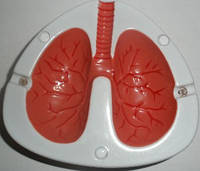 Пепельница легкие курильщика - кашляющая