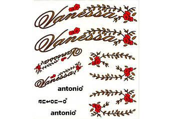 Набір наклейок для велосипеду Vanessa  Antonio