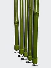 Бамбук в пластиці