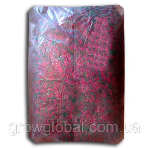 Смерть грызунам зерно 10 кг (зеленое+красное) микс, оригинал