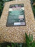 Кедровий горіх якісний 200 г на вагу, фото 4