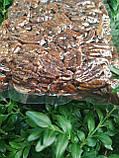 Пекан карамельний чищений горіх Америка 0,5 кг, фото 10